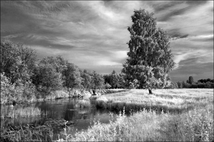 одной красивые фото природы в белых рамках землями владели несколько