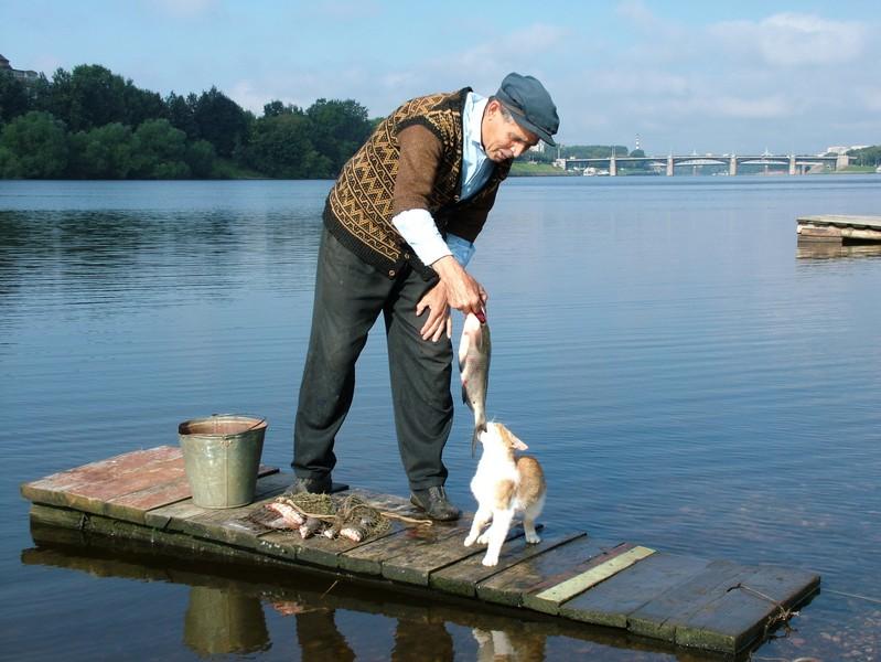 Фотография Кот,рыбак и рыбка, автор Сергей Туманов: http://www.photoline.ru/photo/1298025313?rzd=au