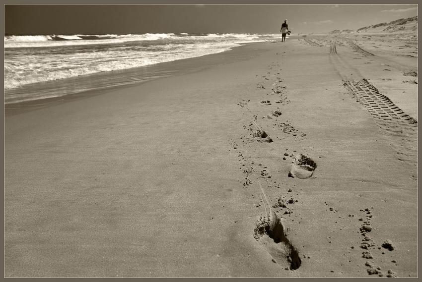 я готов целовать песок по которому: